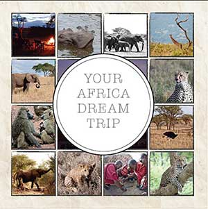 Africa Safari Shutter Tours