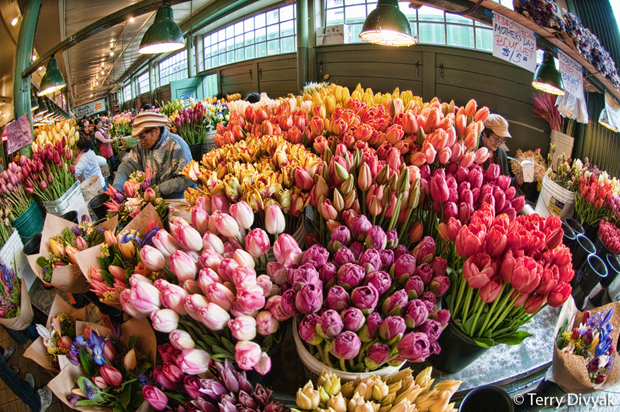 Make sure you bring a wide angle lens when you shoot the market
