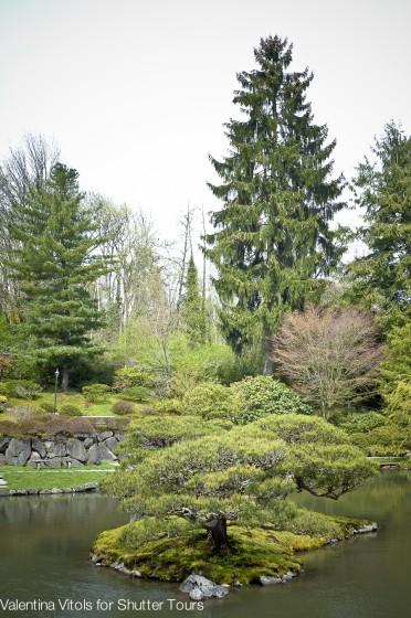 Japanese Gardens at Arboretum - Shutter Tours Trip