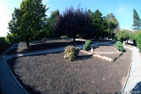 Roozengaarde Empty Garden