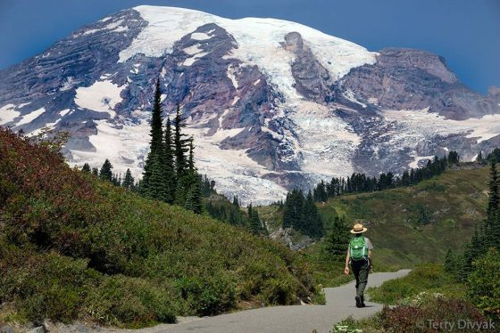 Mt-Rainier-Tour-Shutter-Tours