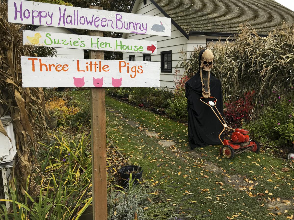 Shuh Farms for Halloween